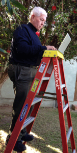 Joseph standing on a six foot ladder with LadderDesk trademark on one of the ladder legs typing on a laptop with trees in the background.